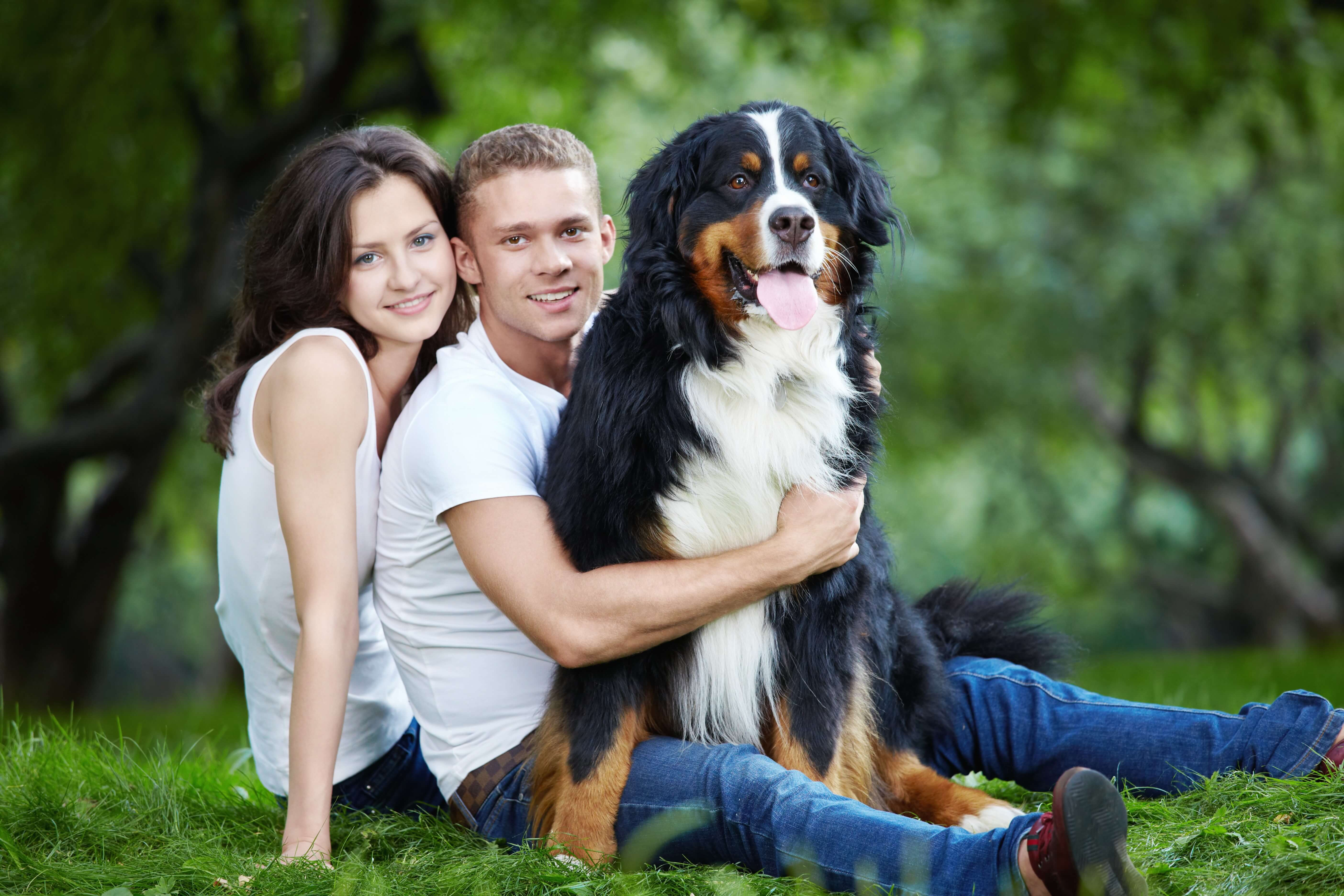Choosing The Right Pet Country Store Farm Pet Home