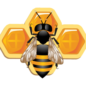 bee classes